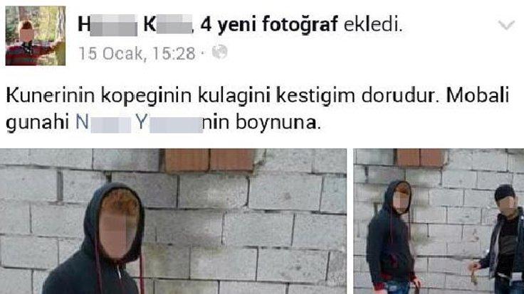 kopek1