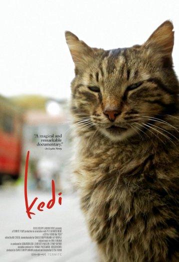 Kedi, (2016) Yön: Ceyda Torun
