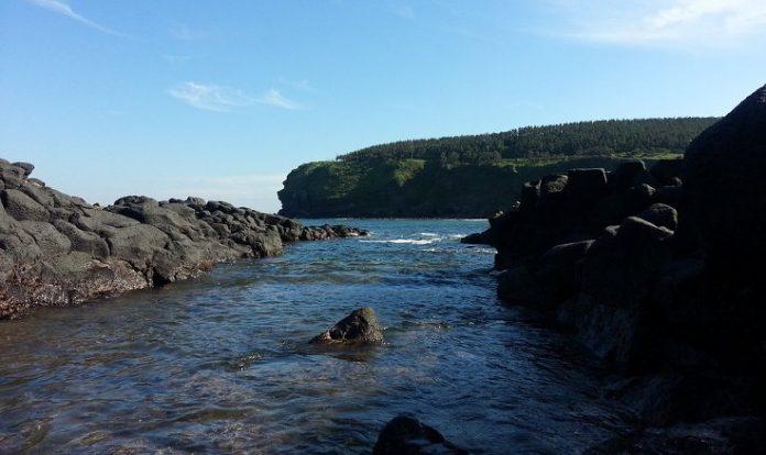 Jeju Adası'nın siyah kayalıkları
