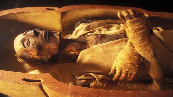 Mısır mumyalarının çoğu, Lazarus pozunda mumyalanmış.