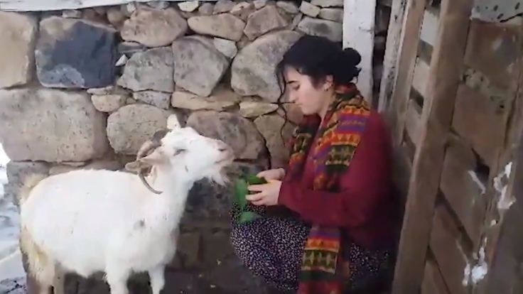 Картинки по запросу Dersim'in en genç kadın muhtar adayı