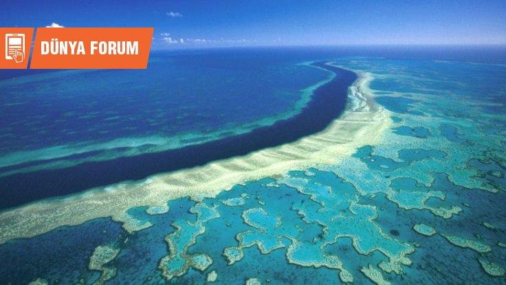 Büyük Set Resifi Hakkında Bilmediğiniz 10 Şey